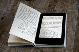 protect ebook publishing